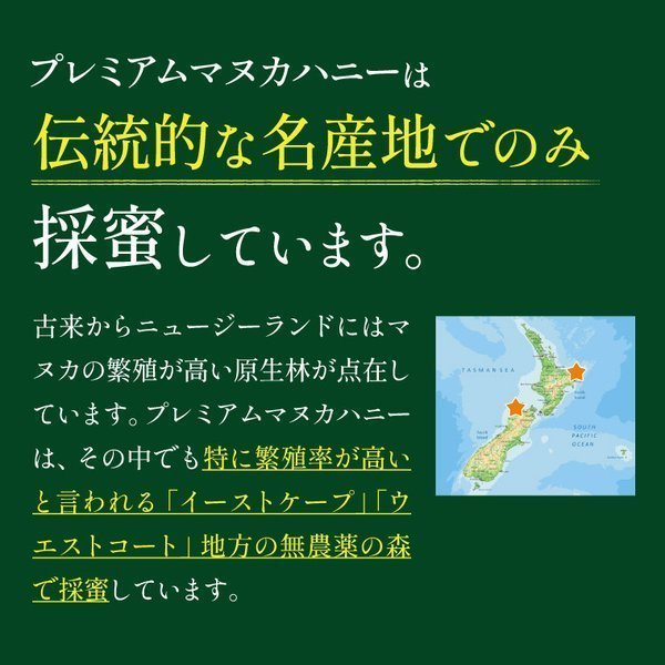 7月中旬発送予定 プレミアムマヌカハニー  UMF5+ はちみつ 送料無料 MGO83以上  初めての方に最適 honeygreenbay 06