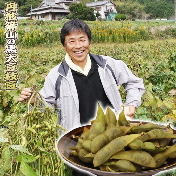 送料無料 これは旨い!藤井さんが作った、丹波篠山の黒大豆枝豆(黒豆/丹波黒/枝豆/たんざく)1kg|honmamonya