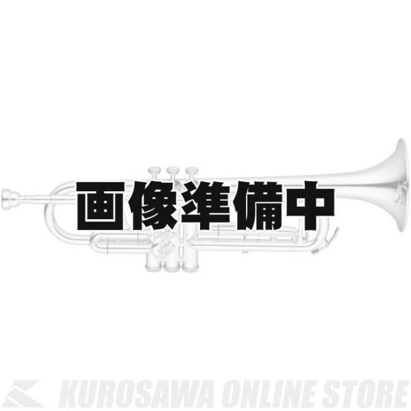 《期間限定!ポイントアップ!》Jupiter Trumpet Standard Series JTR700 (クリアラッカー仕上)(トランペット)(マンスリープレゼント)