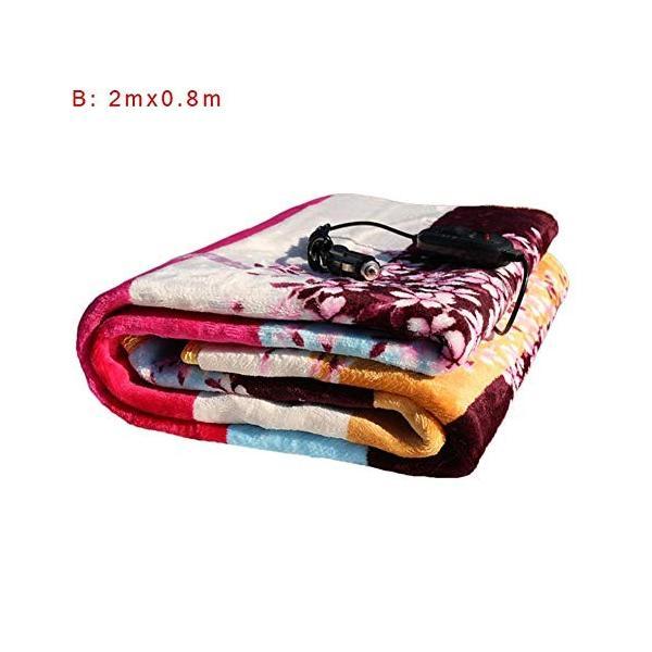 steman-net ホットブランケット 電気毛布 24V車用 日本限定 ホットヒーター毛布 防寒保温 加熱毛布 卓抜 電気ブランケット 過流過圧保護