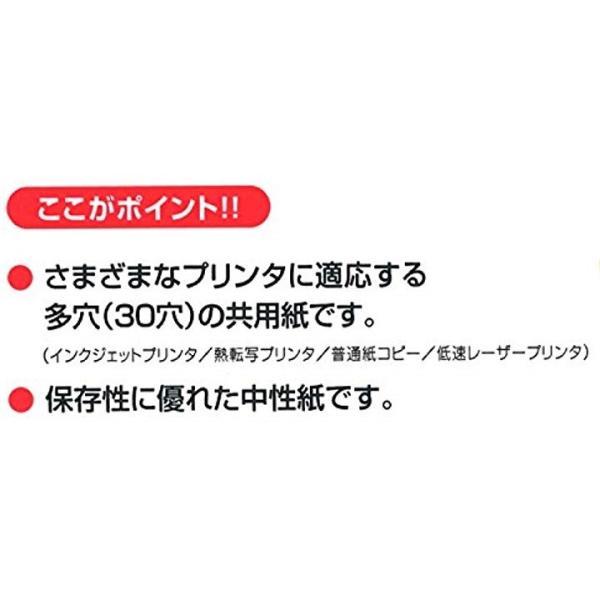 コクヨ コピー用紙 PPC用紙 共用紙 30穴 A4 100枚 KB-109H30N4