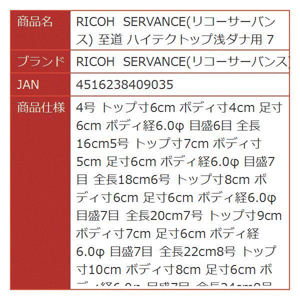 RICOH SERVANCE 至道 ハイテクトップ浅ダナ用 7