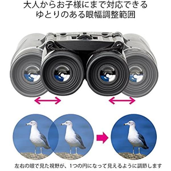Kenko 双眼鏡 V-TEX DH ダハプリズム式 10倍 25口径 2軸式[ブラック][10×25][VT-1025D]