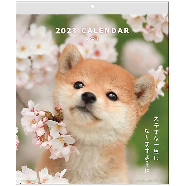 カレンダー 2022 壁掛け DOGウォールカレンダー ACL-01 (A-01) 2022年1月始まり 令和4年 アクティブコーポレーション 犬 い