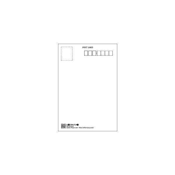 花のポストカード コスモス(白)|horiya-studio|03