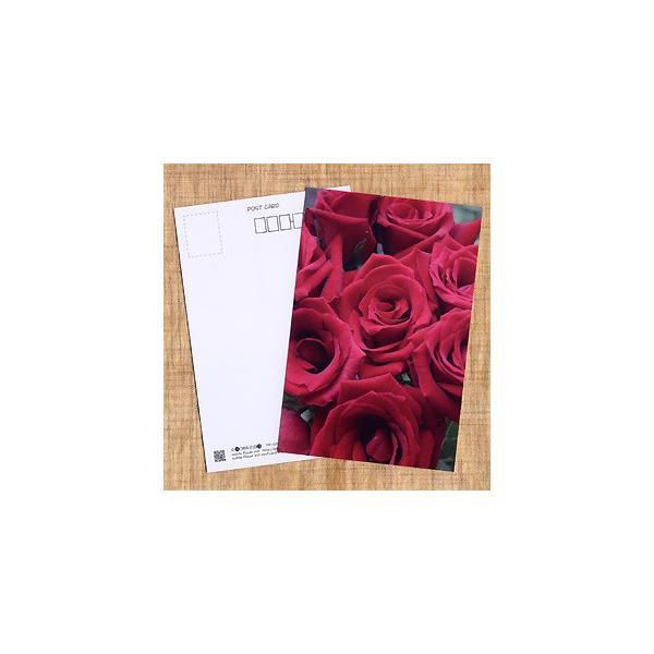 花のポストカード バラ(赤)|horiya-studio