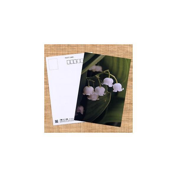 花のポストカード スズラン|horiya-studio