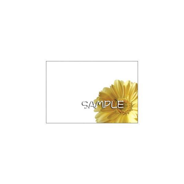 花のポストカード ガーベラ(黄色、インクジェット紙)|horiya-studio|02
