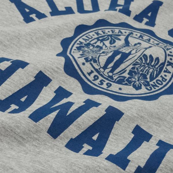 ALOHA STATE HAWAII アロハ ステート ハワイ カレッジTシャツ アメカジ サーフ ブランド メンズ 半袖 HOLIDAZE ホリデイズ horizonblue 04