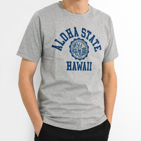 ALOHA STATE HAWAII アロハ ステート ハワイ カレッジTシャツ アメカジ サーフ ブランド メンズ 半袖 HOLIDAZE ホリデイズ horizonblue 06