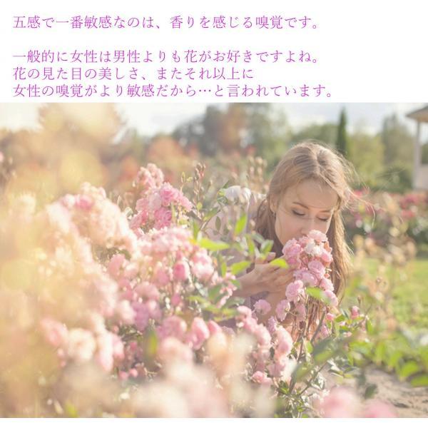 フラワーソープ フラワーギフト バラ 薔薇 プレゼント 花 ハート|hoshinosyounin|02