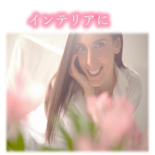 フラワーソープ フラワーギフト バラ 薔薇 プレゼント 花 ハート|hoshinosyounin|07