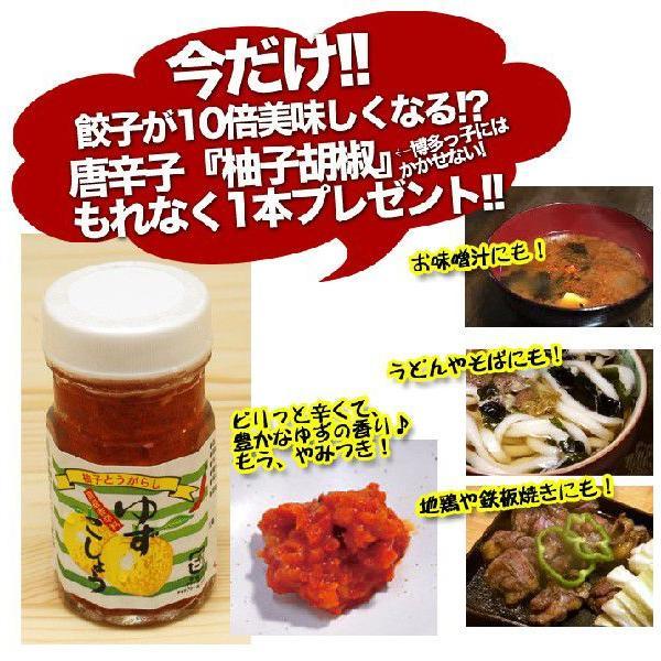 博多ひとくち餃子 70個入 柚子胡椒付き|hot-emu|03