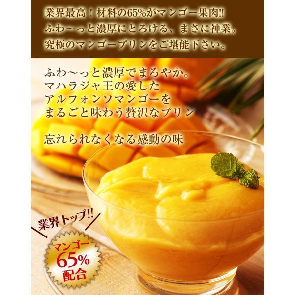 濃厚 神技マンゴープリン 130g|hot-emu|02