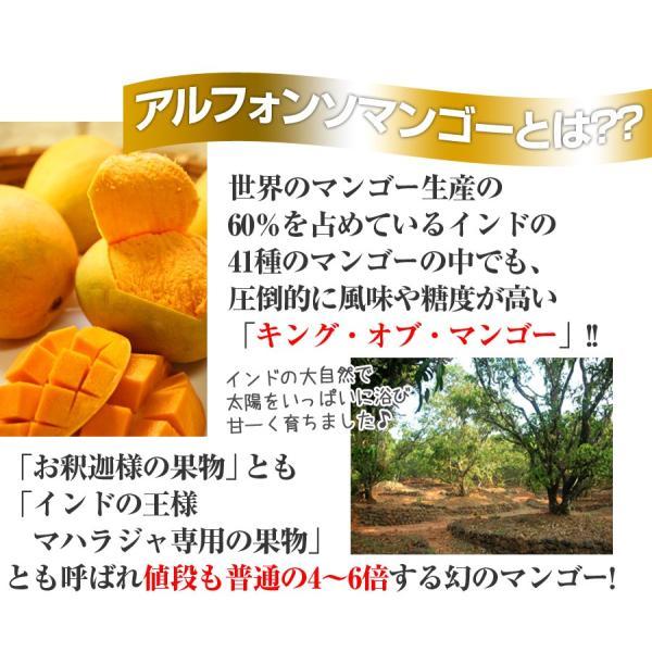 濃厚 神技マンゴープリン 130g|hot-emu|03
