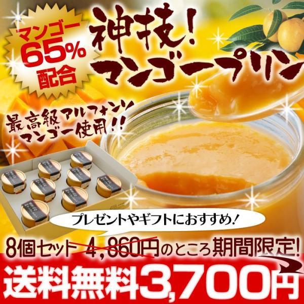 濃厚 神技マンゴープリン 130g×8個入|hot-emu
