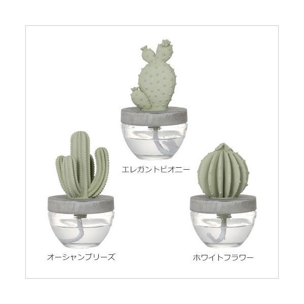 cactus fragrance diffuser カクタス フレグランス ディフューザー