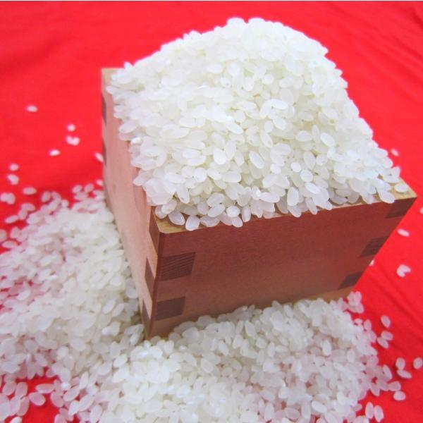 平成30年産長野県飯山産コシヒカリ白米 500グラム×2個 送料無料|hoteiya-net