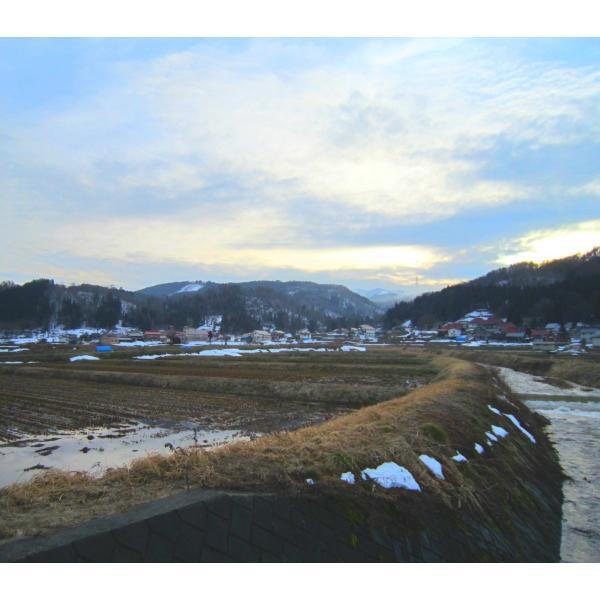 平成30年産長野県飯山産コシヒカリ白米 500グラム×2個 送料無料|hoteiya-net|02