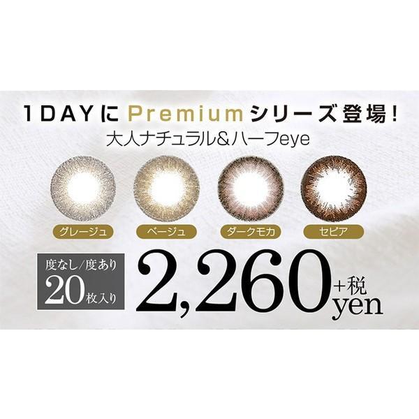 シークレットキャンディマジックワンデープレミアム DIA14.5mm 全4色 度あり 度なし 1日 1箱20枚入り 板野朋美 カラコン ブラウン グレー イエロー hotmart 02