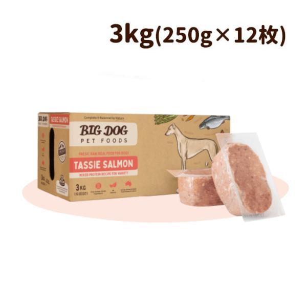 犬用ビッグドッグ冷凍生食【フィッシュ】