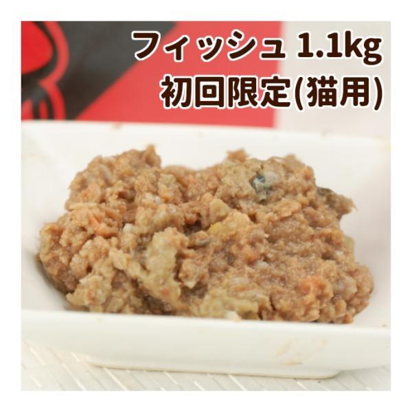 猫 生肉 無添加 キャットフード ボーン BONE フィッシュ 魚 1.1kg アレルギー 酵素 乳酸菌 結石 野菜 生肉 骨 内臓入り 生食