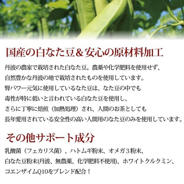 犬 腎臓サポート サプリメント|腎パワー元気犬用 90g【a0298】|houndcom|03