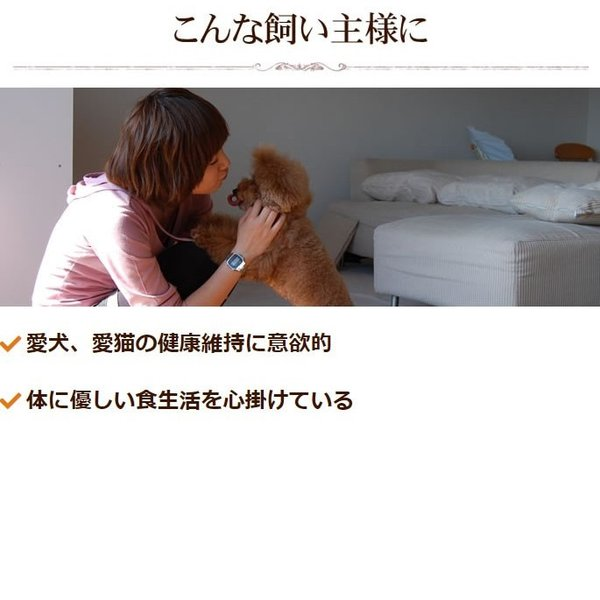 犬 腎臓サポート サプリメント|腎パワー元気犬用 90g【a0298】|houndcom|07