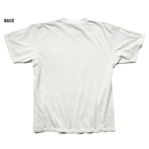 HOUSTON / ヒューストン 21814 PIGMENT TEE (MOSQUITO)/ ピグメント半袖Tシャツ(モスキート) -全5色- houston-1972 03