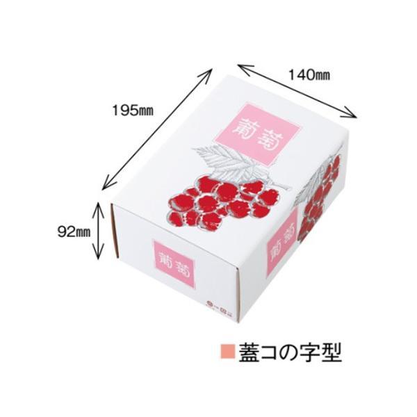 屋号必須 ぶどう箱 高級ぶどう 特A 1K 赤深 210×160×97mm 1ケース100セット入り