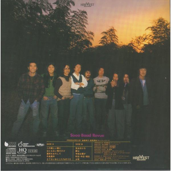 金森幸介とソー・バッド・レヴュー / 少年|hoyhoy-records|02