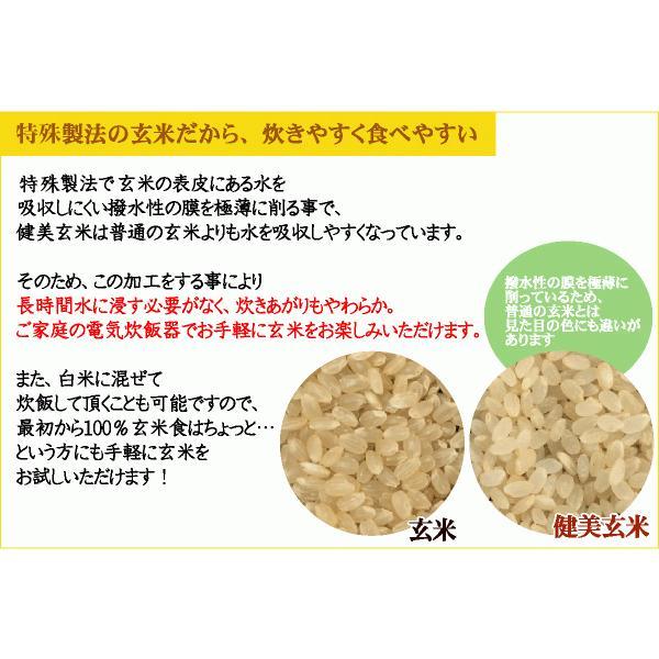 玄米 食べやすい 無洗米 時短  やさしい玄米 2kg 29年産 送料無料 (岩手県産 ひとめぼれ 使用) 特A|hseason|04