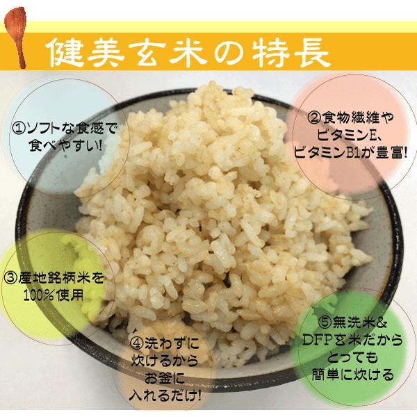(訳あり特価) 玄米 食べやすい 無洗米 時短 からだにやさしい健美玄米 700g セール (単品購入の場合送料加算) 28年産 (岩手ひとめぼれ) 特A|hseason|02