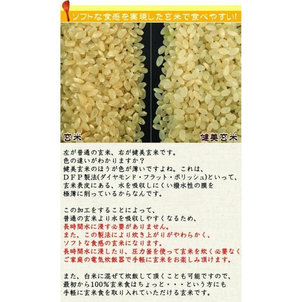 (訳あり特価) 玄米 食べやすい 無洗米 時短 からだにやさしい健美玄米 700g セール (単品購入の場合送料加算) 28年産 (岩手ひとめぼれ) 特A|hseason|03