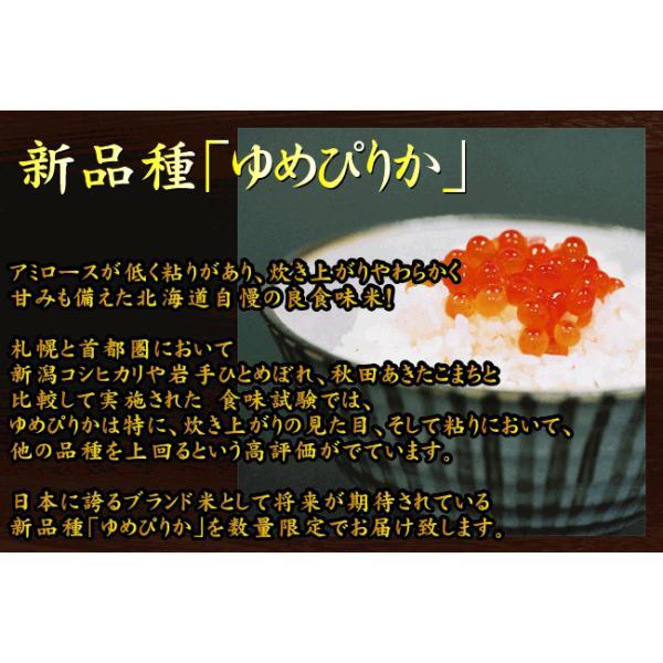 5kg×2袋 北海道産 ゆめぴりか 10kg 精白米 白米 29年産 送料無料|hseason|06