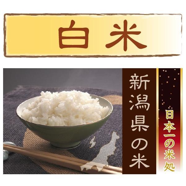 新米 コシヒカリ 10kg 5kg×2袋 米 新潟県産 精白米 白米 29年産 送料無料|hseason|02