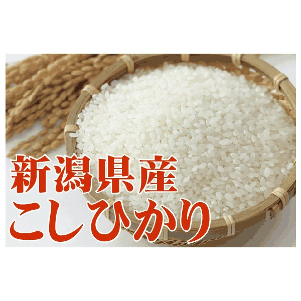 新米 コシヒカリ 10kg 5kg×2袋 米 新潟県産 精白米 白米 29年産 送料無料|hseason|03