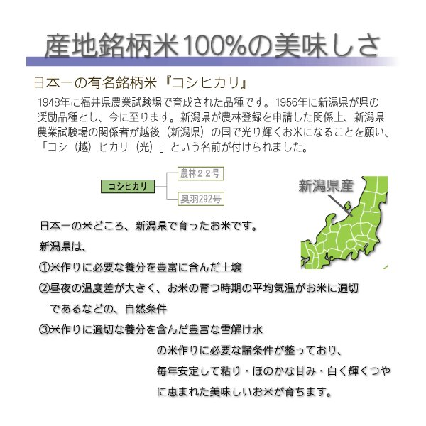 新米 コシヒカリ 10kg 5kg×2袋 米 新潟県産 精白米 白米 29年産 送料無料|hseason|04