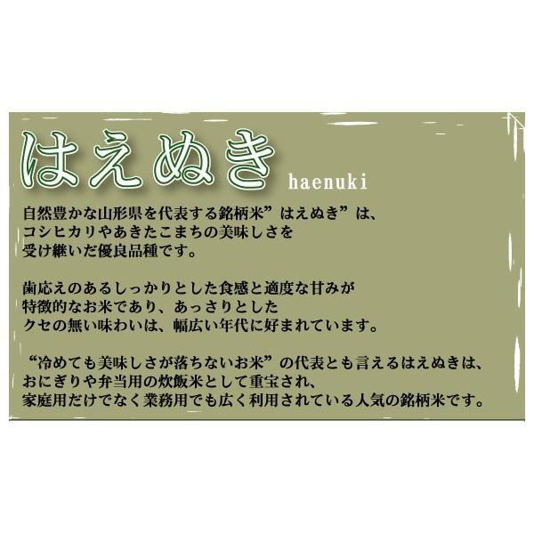 10kg はえぬき 山形県産 白米 精白米 特別栽培米 29年産 送料無料|hseason|03