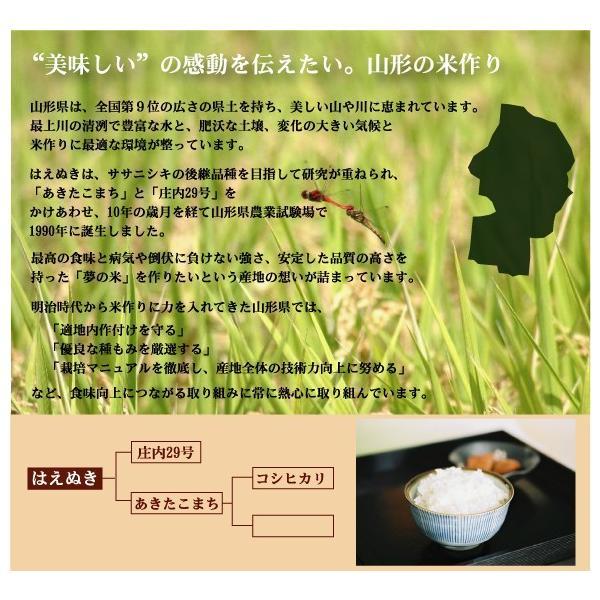 10kg はえぬき 山形県産 白米 精白米 特別栽培米 29年産 送料無料|hseason|04