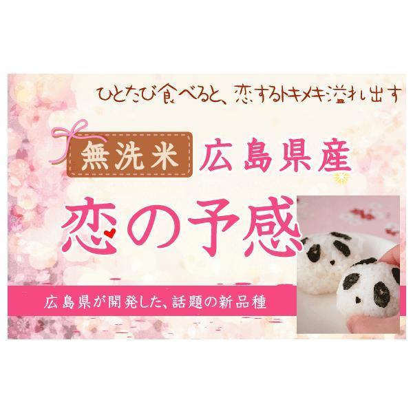 無洗米 5kg×2 恋の予感 広島県産 10kg バレンタイン ミニチョコおまけ付き 30年産 送料無料|hseason|02