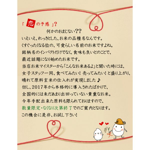 無洗米 5kg×2 恋の予感 広島県産 10kg バレンタイン ミニチョコおまけ付き 30年産 送料無料|hseason|03