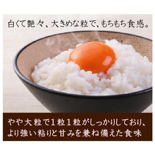 無洗米 5kg×2  恋の予感 広島県産 10kg ポイント2倍 29年産 送料無料|hseason|04