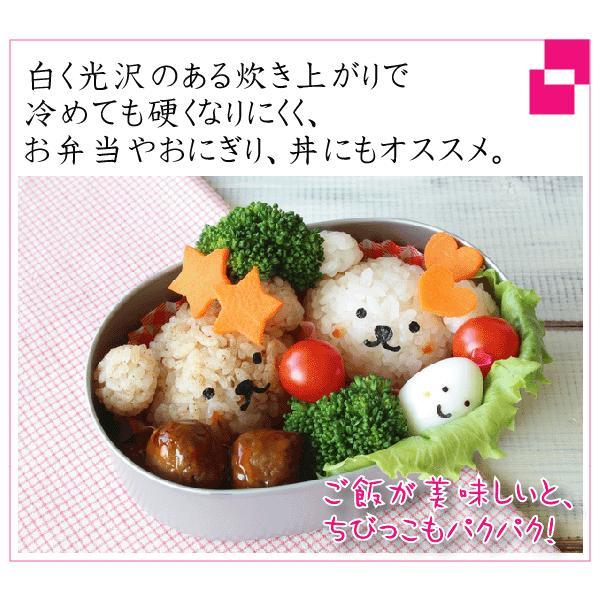 無洗米 5kg×2 恋の予感 広島県産 10kg バレンタイン ミニチョコおまけ付き 30年産 送料無料|hseason|05