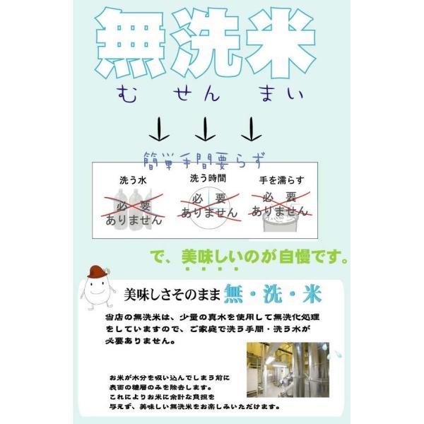 無洗米 10kg 5kg×2袋 三重県産 コシヒカリ 29年産 多気農協 ぎんひめ限定 送料無料|hseason|06