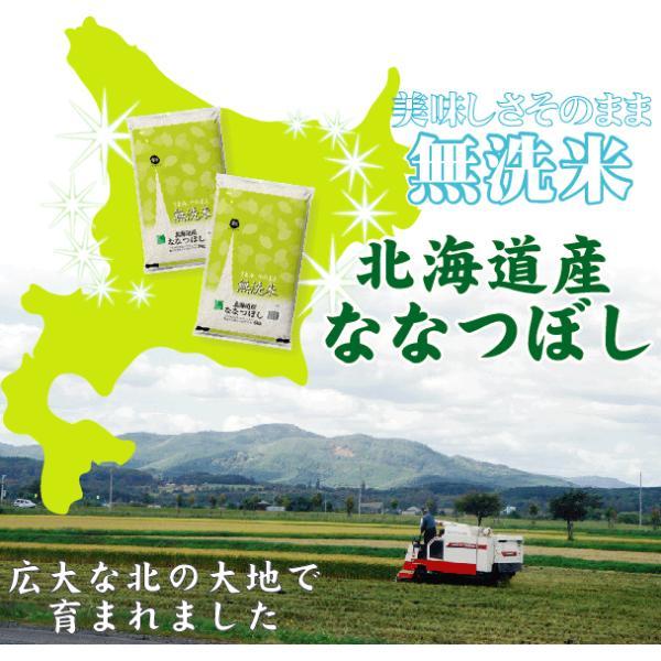 無洗米 5kg×2 ななつぼし 北海道産 10kg 30年産 送料無料  特A hseason 03