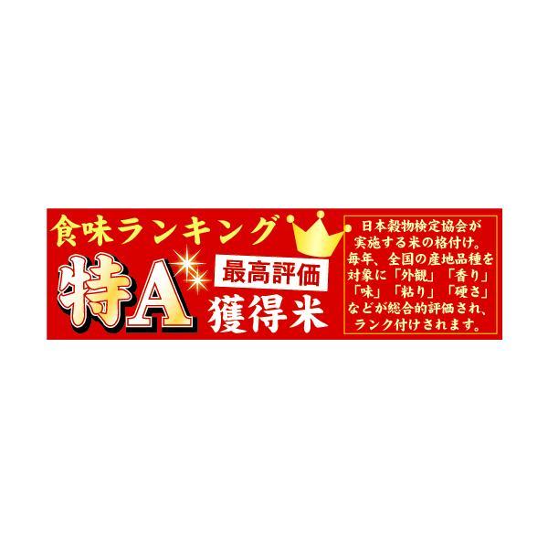 無洗米 5kg×2 ななつぼし 北海道産 10kg 30年産 送料無料  特A hseason 07