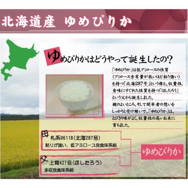 無洗米 5kg ゆめぴりか 北海道産 29年産 送料無料|hseason|05