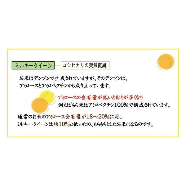 無洗米 5kg×2袋 ミルキークイーン 石川県産 10kg 29年産 送料無料|hseason|04