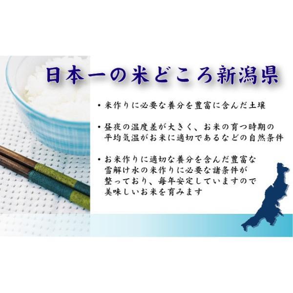 新米 5kg 無洗米 新潟県産 コシヒカリ 29年産 送料無料|hseason|02